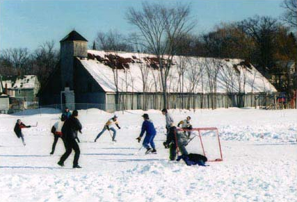 Image of boys playing hockey in front of the Stannus Street rink